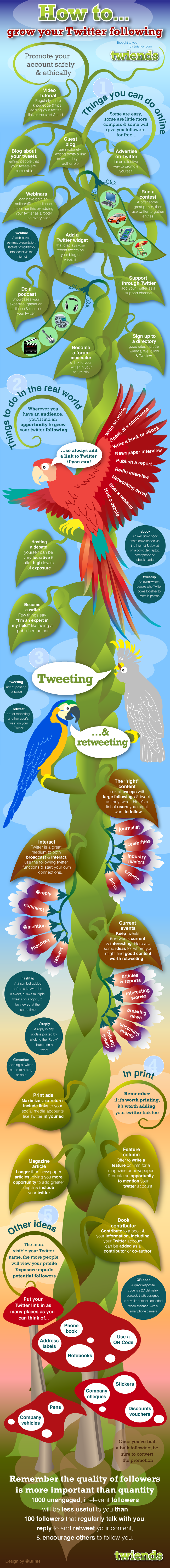 growtwitter What Is Inforgraphics